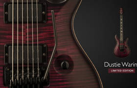 PRS Dustie Waring Limited Edition 'Floyd' Custom 24